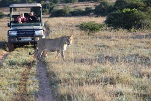 game reserve near you